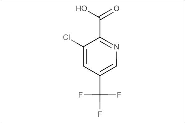 3-Chloro-5-trifluoromethylpyridine-2-carboxylic acid