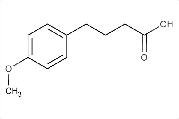 4-(4-Methoxyphenyl)butyric acid