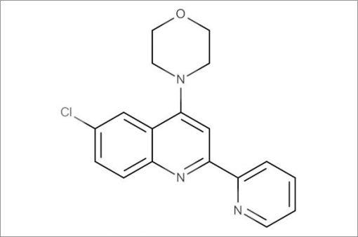 4-(6-Chloro-2-(pyridin-2-yl)quinolin-4-yl)morpholine