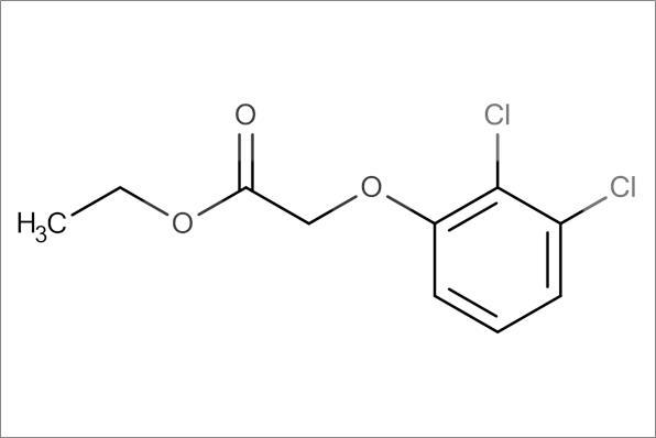 Ethyl 2,3-dichlorophenyloxy acetate