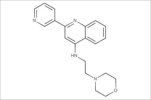 N-(2-Morpholinoethyl)-2-(pyridin-3-yl)quinolin-4-amine
