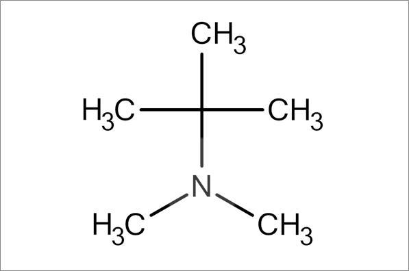 tert-Butyldimethylamine