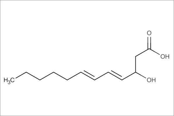 trans,trans-3-Hydroxydodeca-4,6-dienoic acid, min.